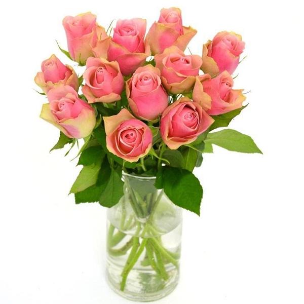 Sainsbury's Roses Bouquet   Sainsbury's on taylor flowers, reed flowers, tesco flowers, sharp flowers, amazon flowers, clarke flowers, ikea flowers, monsoon flowers,