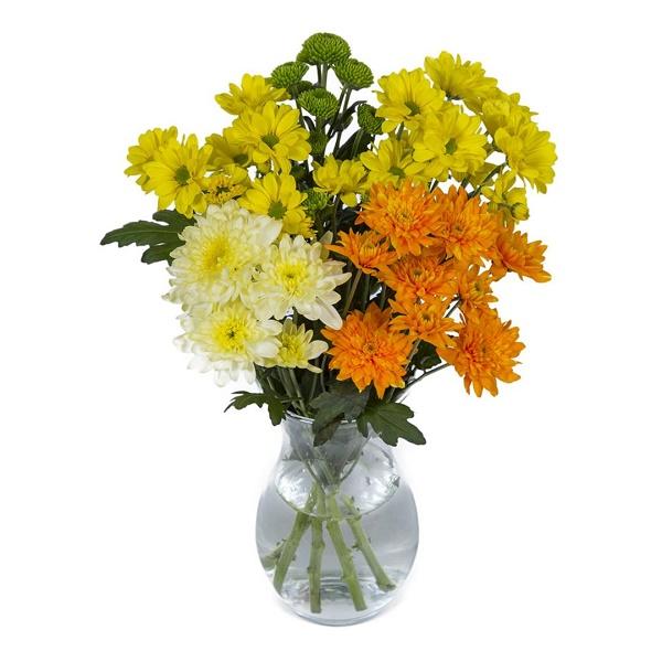 Sainsbury's Yellow Chrysanthemums Bouquet   Sainsbury's on taylor flowers, reed flowers, tesco flowers, sharp flowers, amazon flowers, clarke flowers, ikea flowers, monsoon flowers,