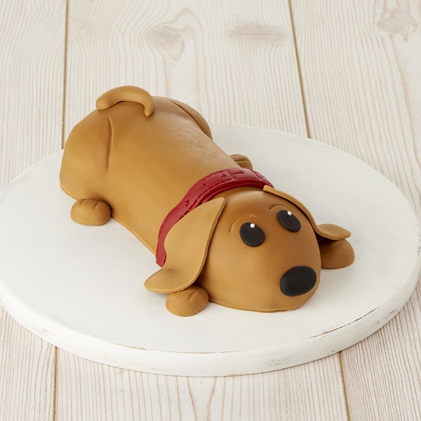 Close Image For Sainsburys Sammy The Sausage Dog Cake 922g From