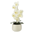Sainsbury S Faux Floral White Orchid In White Pot Sainsbury S